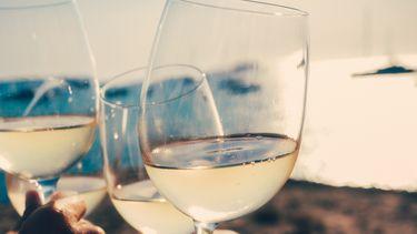 wijnmachine koelkast, wijn