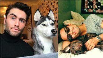 honden baasjes featured
