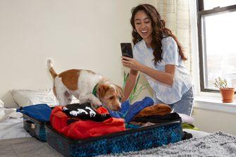 OnePlus phone summerproof