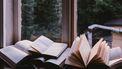 boeken in een raam