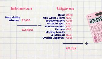 inkomsten en uitgaven shirley