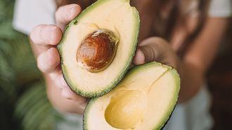 avocado bewaren tiktok hack