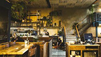 dining hotspot cannibale royale rozengracht